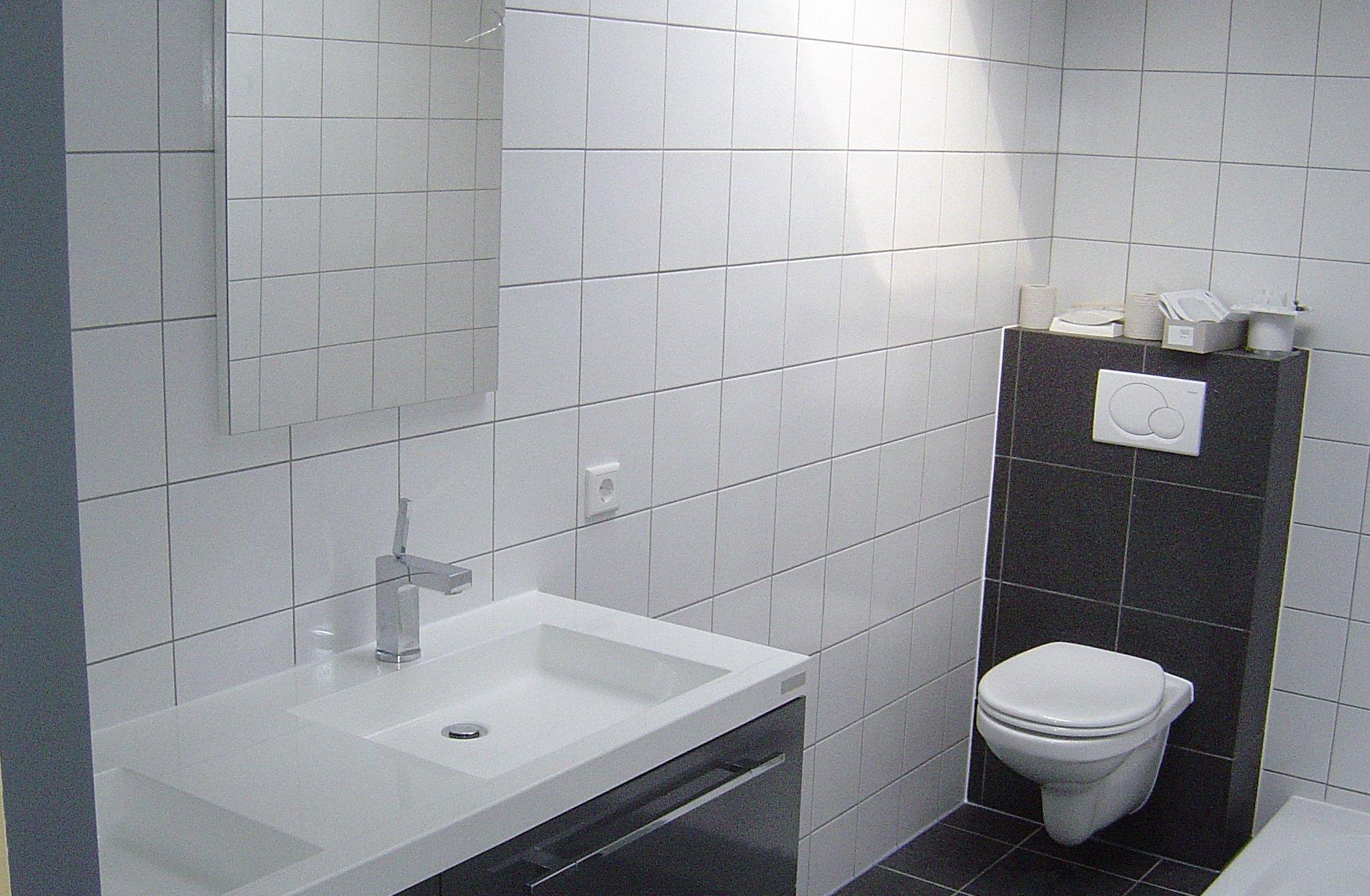 Badkamer En Toilet : Badkamer en toilet renovatie lanting technische installaties